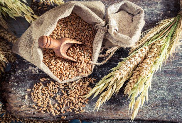 стандарт на пшеницю